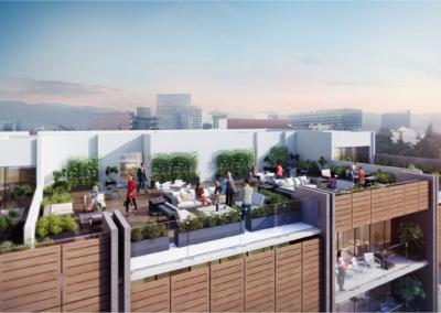 roofgarden2